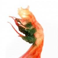 北京发货 北极俄罗斯甜虾刺身级 1kg