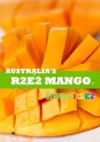 顺丰发货 国内现货 R2E2澳洲芒果 4/ 6个装