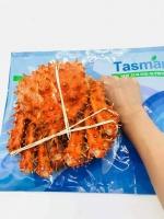 限时特惠【国内发包邮】塔斯曼熟冻帝王蟹  约1-1.2KG/只